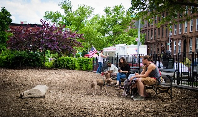 NYC Neighborhoods Perfect for Dogs